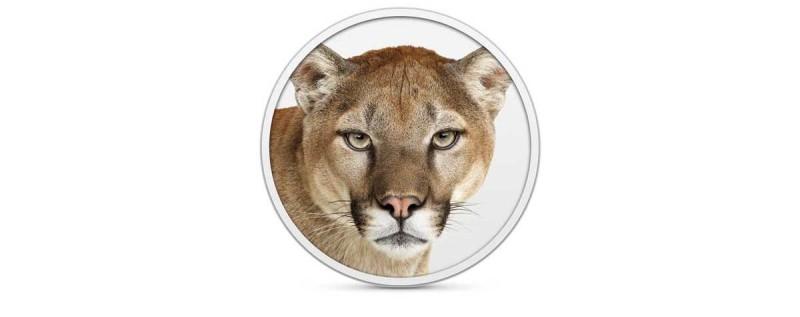 ML_Mtn_Lion